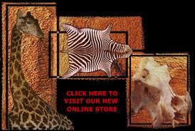 Genuine Zebra Rug Zebra Rugs Real Felt Lined Zebra Skin Rug African Zebra Skins