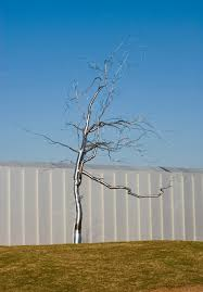 time lapse installing the silver tree circa ncma