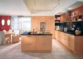 Light Wood Cabinets Kitchen Lovely Contemporary Wood Cabinets Ideas Kitchen Cabinets Modern