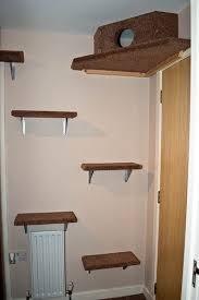 best 25 cat wall shelves ideas on pinterest diy cat shelves cat
