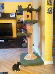 Cat Gyms Building Your Own Kitty Jungle Gym Cat Forum Cat Discussion