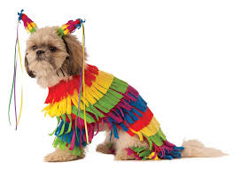 top 20 best cute dog costumes for halloween in 2017 heavy com