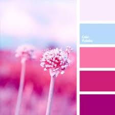 Pink Color Scheme Pink Color Palettes Page 3 Of 73 Color Palette Ideas Colors