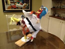 robert blumofe on cynthia and nathan made turkey chan