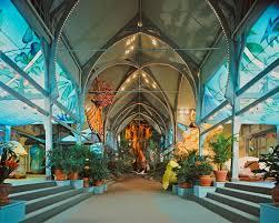 treehouse hotel pennsylvania philadelphia zoo george d widener memorial tree house life in