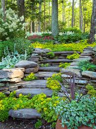 Slope Landscaping Ideas For Backyards Hillside Landscaping Ideas