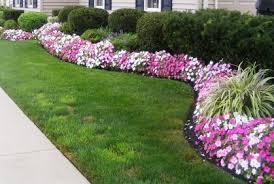 Garden Shrubs Ideas Pleasant Idea Landscaping Shrubs Garden Design With Bushes