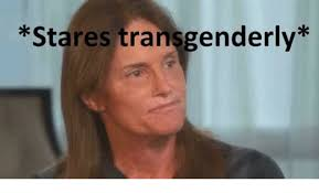 Stare Meme - 25 best memes about stares transgenderly stares transgenderly
