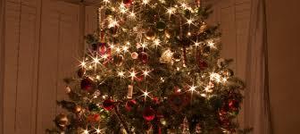 pre lit tree home