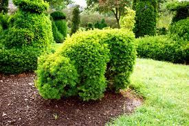 Columbus Topiary Garden - columbus in pictures just claire