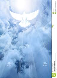 white dove descending from the clouds stock illustration image