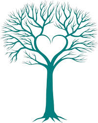 best 25 family tree ideas on family tree