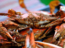 eight maryland crab houses worth the drive
