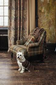 the 25 best tartan chair ideas on pinterest laura ashley