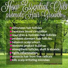 kalojoni seed oil hair scalp 10 benefits of essential oils for hair growth how they work