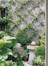 best 25 vine trellis ideas on pinterest plant trellis trellis