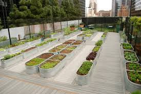 water trough planter jonathan club los angeles farmscape gardens