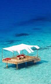 Maldives Cottages On Water by The Exotic W Retreat U0026 Spa Maldives Glass Floor Overwater Bungalow