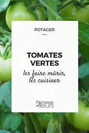 comment cuisiner les tomates vertes que faire des tomates vertes tomates tomates vertes et vert
