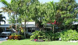 backyard wildlife habitat u0026 op garden club oakland park fl
