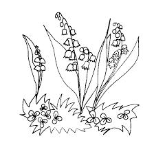 coloriage de Muguet sur herbe  Tête à modeler