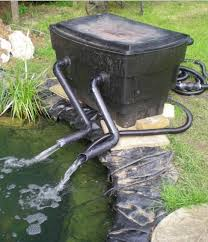 Backyard Bassin - 454 best bassin d eau pond images on pinterest garden ideas