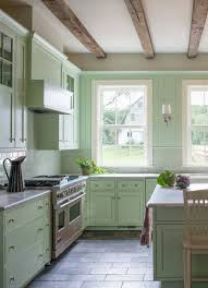 Kitchen Cabinets With Countertops 15 Kitchens With Bright Green Cabinets Kitchn
