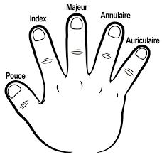 Les cinq doigts de la main  Lulu la taupe jeux gratuits pour enfants