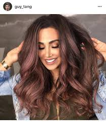 rose gold lowlights on dark hair rose gold highlights on chocolate brown hair hair color cut