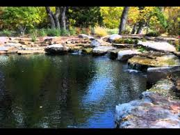 Natural Swimming Pool Natural Swimming Pools U0026 Ponds About Youtube