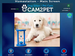 cam2pet dog monitor u0026 pet cam android apps on google play