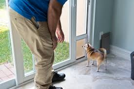backyards how much does cost install doggy door doggy door 1 to