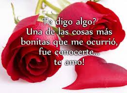 bonitas de rosas rojas con frases de amor imagenes de amor facebook preciosas imágenes de rosas con frases románticas de amor