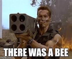 Arnold Schwarzenegger Memes - arnold schwarzenegger commando meme generator imgflip