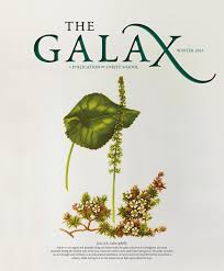 the galax winter 2014 by christ issuu