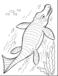 water saur coloring pages baby dinosaur for preschoolers free