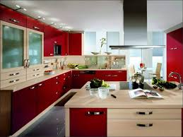 Top Kitchen Cabinet Brands Kitchen High End Kitchens Designs Amazing U0027s Kitchen Top 10