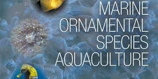 marine ornamental species aquaculture vetbooks