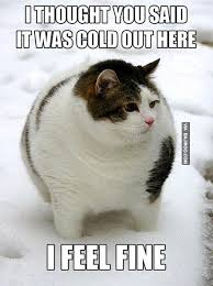 Funny Snow Memes - snow memes funny image memes at relatably com
