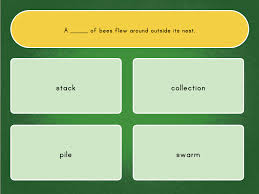 collective nouns quiz story education com