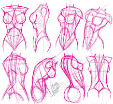 Female Anatomy Image Drawing Tutorials Female Torso Breast Drawings Tutorials And