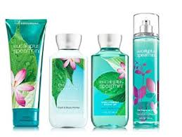 Bath And Body Gift Sets Buy Bath U0026amp Body Works Eucalyptus Spearmint Deluxe Gift Set
