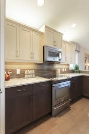 Kitchen Cabinets Des Moines Ia Cabinet Styles