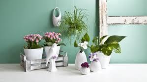 vasi decorativi vasi per fiori eleganti oggetti decorativi dalani e ora westwing