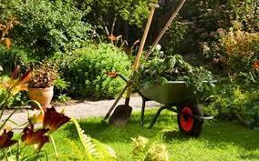 cura giardino giardiniere a casa tua cura e manutenzione di giardini e aiuole