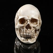 Halloween Skeleton Prop by Compare Prices On Human Ghosts Online Shopping Buy Low Price