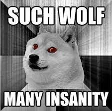 Insanity Meme - insanity doge meme weknowmemes
