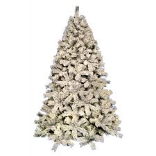 christmas trees u2013 next day delivery christmas trees from