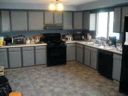 Black Metal Kitchen Cabinets Modern Kitchen Cabinetry Prime Exles Of Modern Kitchen Cabinets