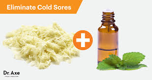 How To Get Rid Of Bed Sores How To Get Rid Of Cold Sores Naturally Dr Axe